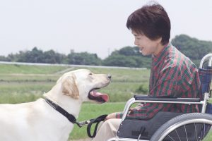 介護保険を利用して自宅で受けられるサービスについて【短期入所編】